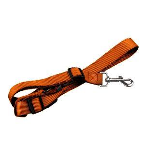 Pet Collar & Lead