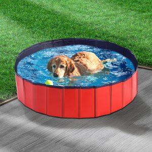 Pet Swimming Pool